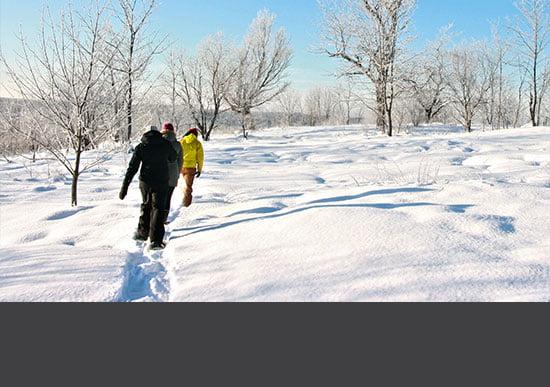 Snowshoe Tour Thumbnail