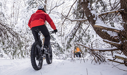 Winter Bike Rentals