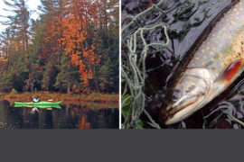 Kayak Fishing Experience Thumbnail