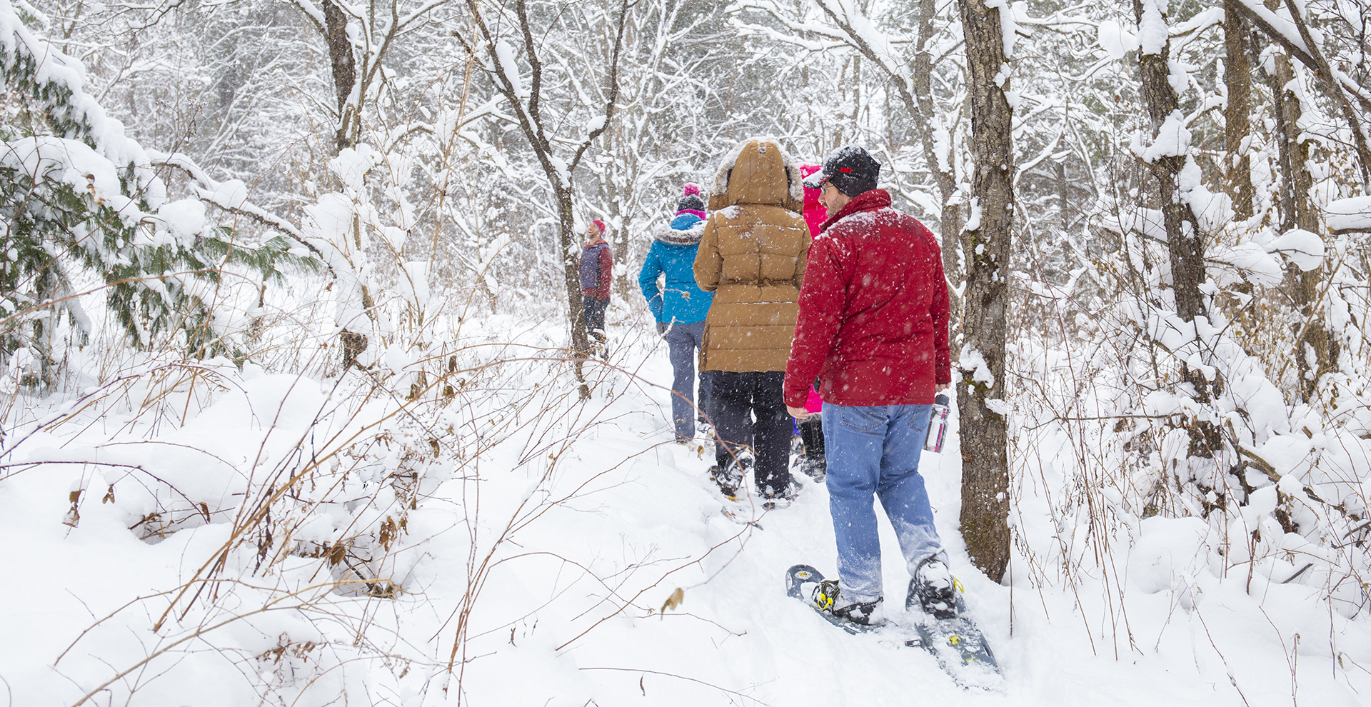 Snowshoeing – Guided Group Adventure