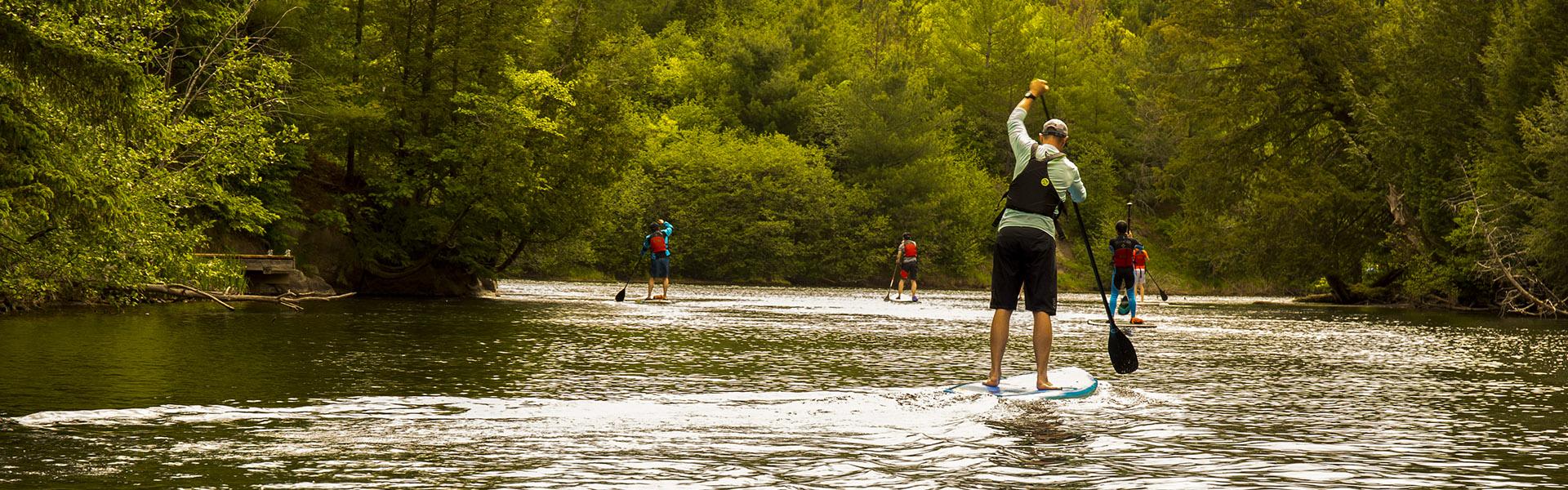 Muskoka Paddleboarding Adventure